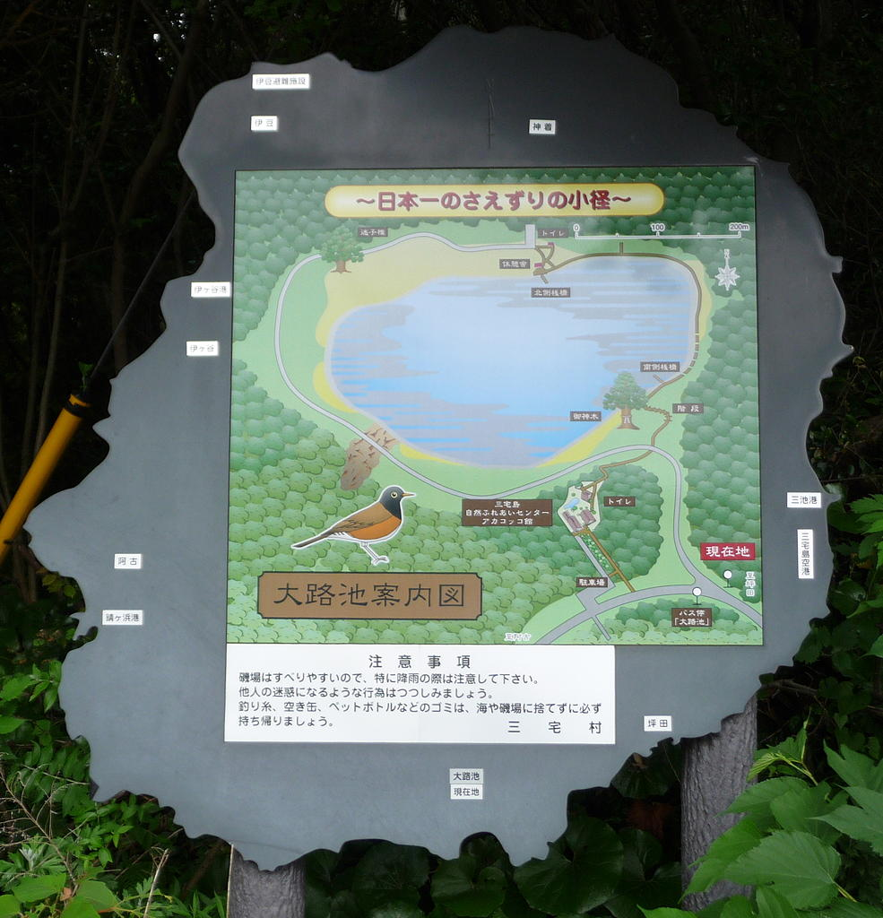 Isolated in the Izu Islands Wild Watch Japan Nature Guides